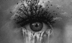 pleur1