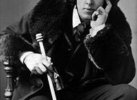 Brandreth, Gyles : la série Oscar Wilde