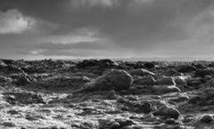 Indridason, Arnaldur «Le lagon noir» (2016)