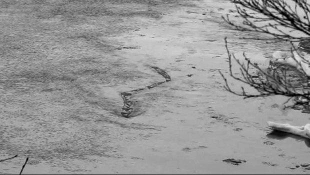 Indridason Arnaldur Serie Erlendur Sveinsson Ballade Au Fil De L Eau